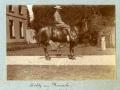 1901 dogsetc 2